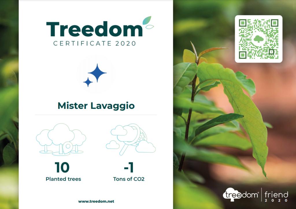 Treedom: pianta un albero e guardalo crescere!